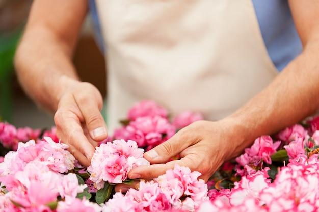 정원사. 온실에 서 있는 동안 꽃을 돌보는 앞치마를 입은 남자의 자른 이미지