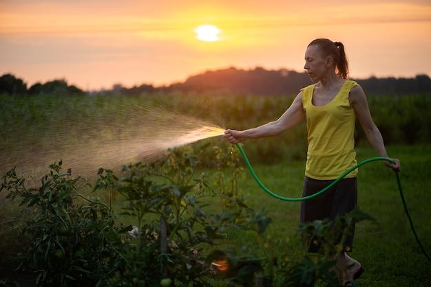 Женщина-садовник держит ручной опрыскиватель и поливает растения в саду на закате