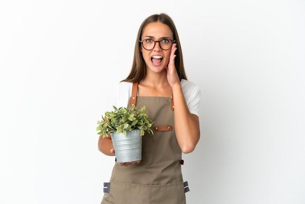 驚きとショックを受けた表情で孤立した白い背景の上に植物を保持している庭師の女の子