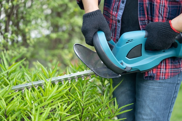 Садовник держит электрический кусторез, чтобы срезать верхушку дерева в саду.