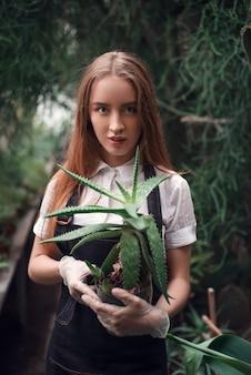 Gardener holding succulent plant in hands.