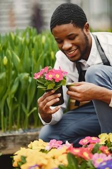 Садовник в фартуке. африканский парень в оранжерее. цветы в горшке.