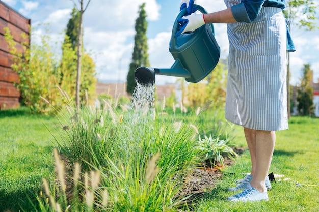 앞치마에 정원사. 줄무늬 앞치마와 흰색 운동화를 입은 정원사는 정원 침대에 물을 주면서 매우 바쁘다고 느낍니다. 프리미엄 사진