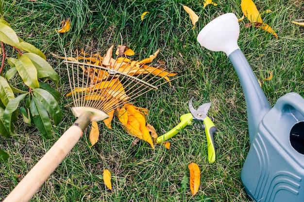 Садовник осенью чистит газон граблями. лейка, секатор и зеленая трава на заднем плане.