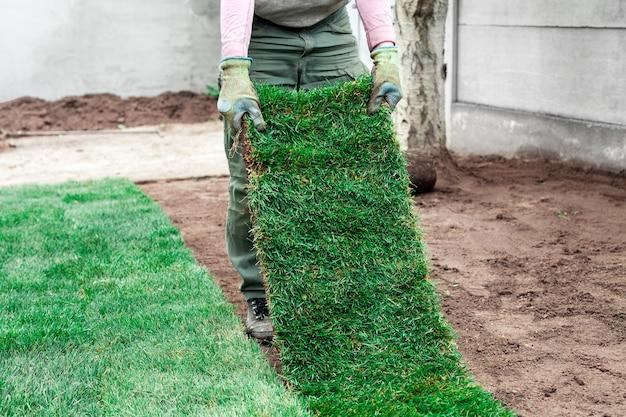 Садовник покрывает почву зелеными рулонами газона