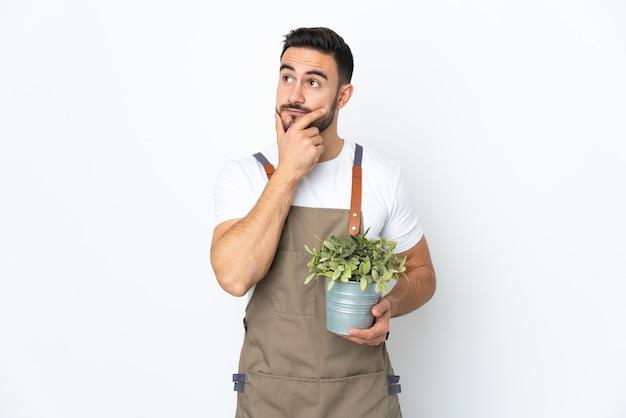 정원사 남자는 의심하는 데 고립 된 식물을 들고