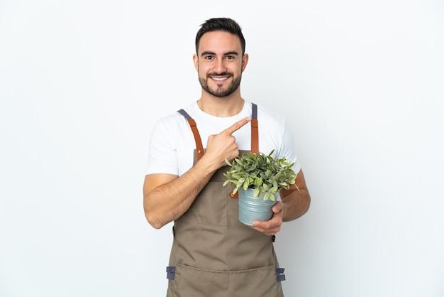제품을 제시하기 위해 측면을 가리키는 흰색 배경에 고립 된 식물을 들고 정원사 남자