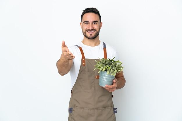 좋은 거래를 닫기 위해 악수하는 흰 벽에 고립 된 식물을 들고 정원사 남자