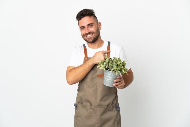 Мужчина-садовник держит растение на изолированном белом фоне, указывая в сторону, чтобы представить продукт