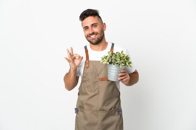 손가락으로 확인 표시를 보여주는 격리 된 흰색 배경 위에 식물을 들고 정원사 남자