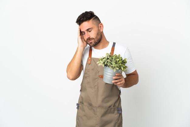 Садовник мужчина держит растение на изолированном белом фоне с головной болью