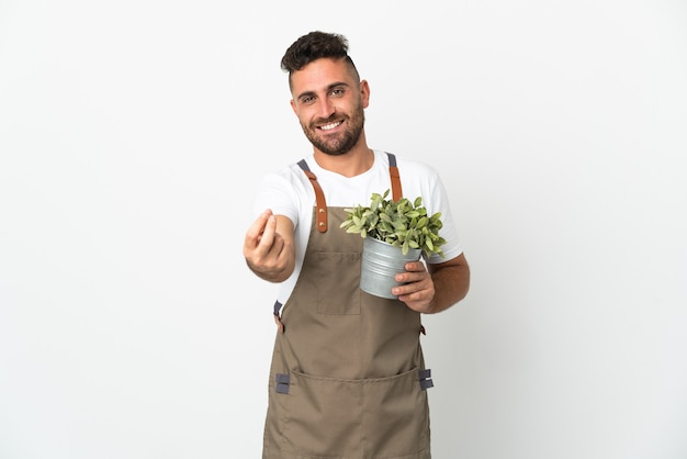 Gardener man holding a plant over isolated white background making money gesture