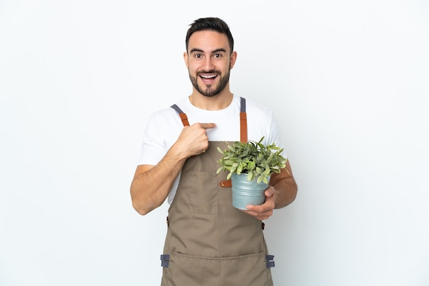 Gardener man holding a plant isolated on white wall with surprise facial expression