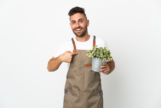 Gardener man holding a plant over isolated white wall with surprise facial expression