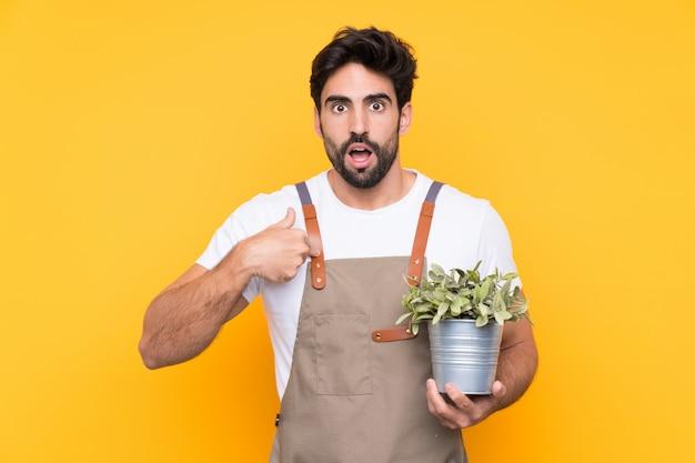 Садовник человек с бородой на изолированной желтой стене с удивленным выражением лица