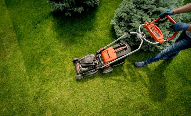 잔디를 깎고 정원사. 조경 설계. 녹색 잔디 배경