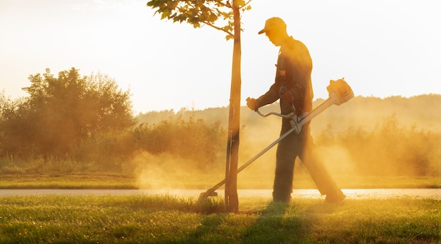 A gardener mows the lawn with a lawn mower early in the morning at dawn