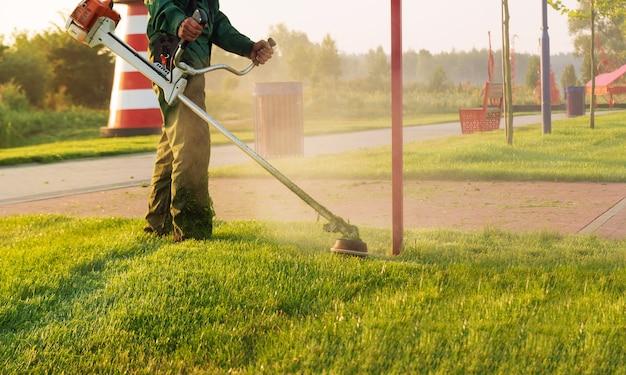 Садовник косит газон газонокосилкой рано утром на рассвете. уход за газоном и парковой зоной.
