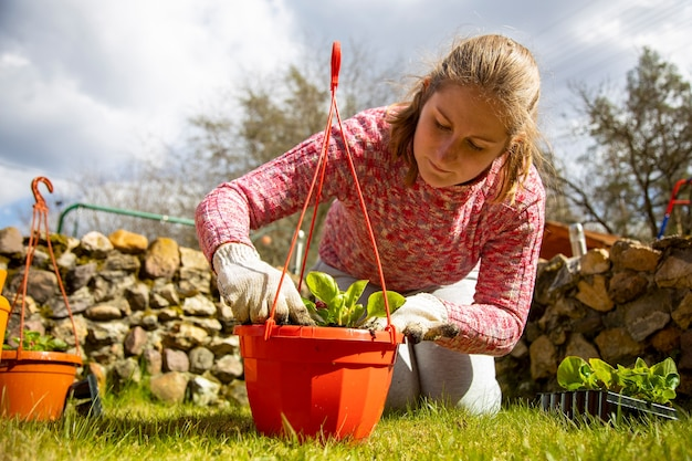 庭師n家庭用手袋鍋に花を植える晴れた日