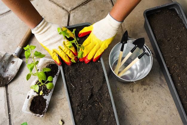 화분 도구로 심는 정원사. 집, 야외에서 여름 정원에서 여자 손 심기 꽃 피튜니아. 원예 및 꽃의 개념입니다. 화분 도구로 심는 정원사. 높은