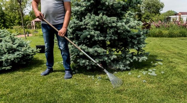 Садовник сгребает срезанные листья в саду.