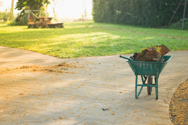 Gardener's cart is used to collect the leaves after swept.