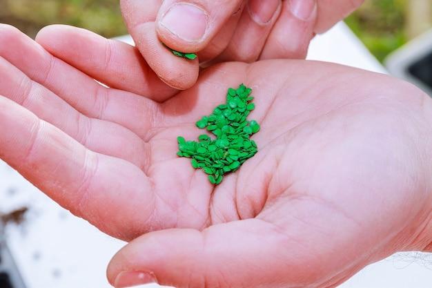 정원사의 손으로 땅에 고추 씨앗을 심습니다.