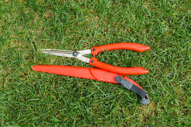 정원사의 도구 - 정원 톱과 가지 치기 가위는 풀밭에 놓여 있습니다.