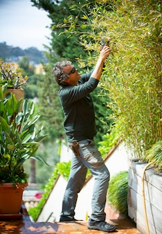 Gardener trimming plants on a sunny day