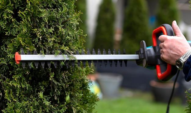 Садовник использует машинку для стрижки живой изгороди в саду