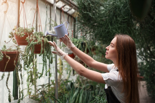 Gardener watering plant from a watering can