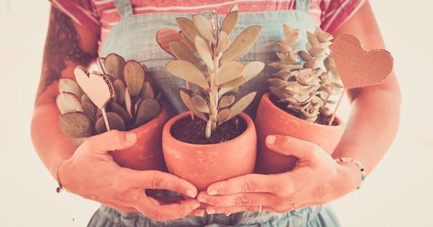 Женщина-садовник работа, держащая три растения