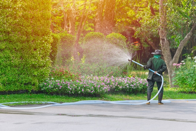 Gardener worker spray watering tree and plant in the park every morning