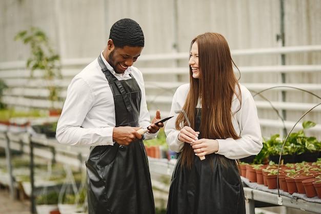 Садовники в теплице работают. парень и девушка в фартуках. уход за растениями.