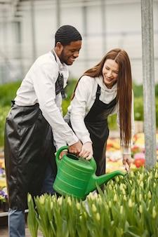 온실의 정원사가 일하고 있습니다. 앞치마를 입은 남자와 여자. 식물 관리.