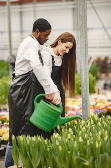 温室の庭師は働いています。エプロンの男と女。植物の手入れ。