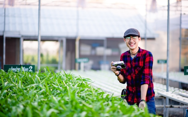 庭師のサラダの男性彼の庭でサラダを見て健康的な野菜のプロットを作るという概念