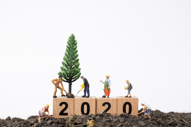 Gardeners  take care of a  tree on wooden block number 2020