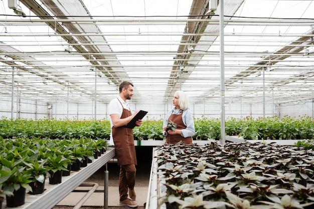 Gardeners talking about plants in greenhouse