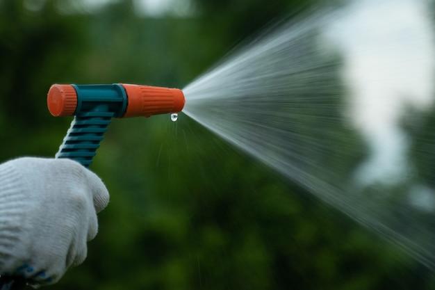 Садоводство и уход заделывают руками человека со шлангом, поливающим лужайку