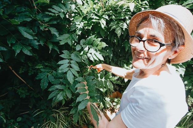 원예 및 사람 개념 - 여름 정원에서 꽃을 심는 행복한 노년 여성