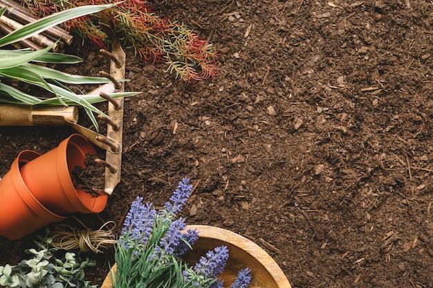 植物と宇宙の園芸用組成物