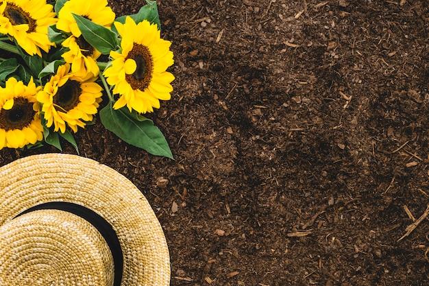 Садовая композиция с подсолнухами, шляпкой и пространством справа
