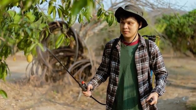원예 개념 남성 정원사는 전체 나무에 유기 살충제를 뿌려 곤충을 제거합니다.