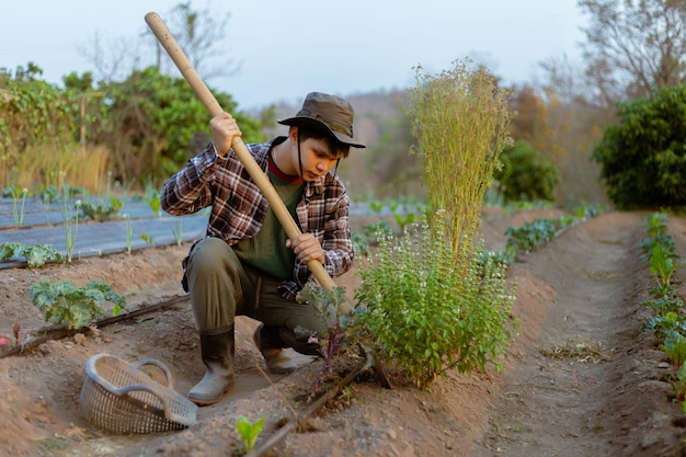 원예 개념은 산소가 뿌리를 쉽게 통과할 수 있도록 식물 주위에 흙을 삽질하는 젊은 농부입니다.