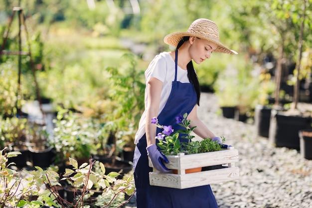 ガーデニングのコンセプト。木製の箱に花を持つ美しい若い女性の庭師。