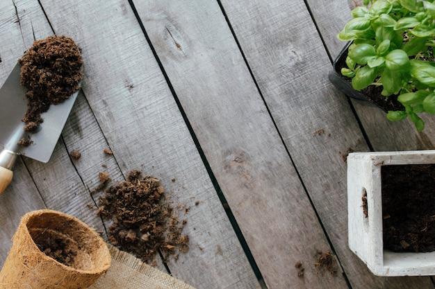 ガーデニングのコンセプト。緑の植物、シャベル、木製の背景に汚れとエコポット。庭の趣味。