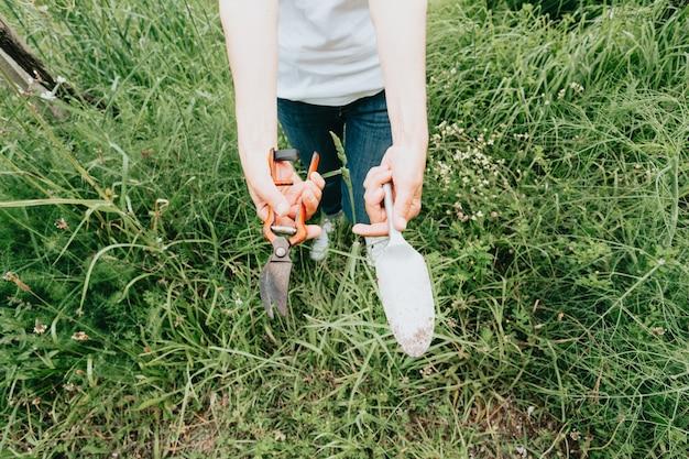 원예 개념 - 빨간 장미를 심는 햇살 가득한 정원의 정원사. 정원에서 일하는 시니어 여성 80 세