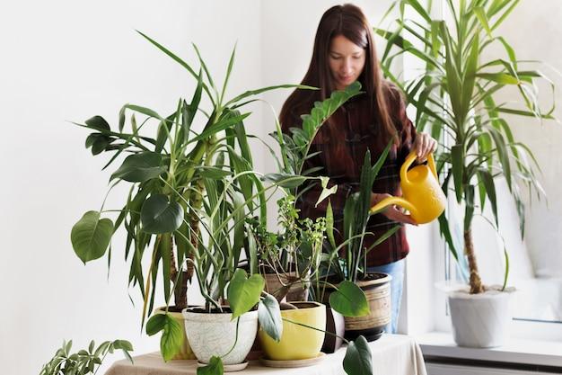 自宅でガーデニングコンセプト観葉植物。自宅の部屋で家の植物に水をまく若い女性