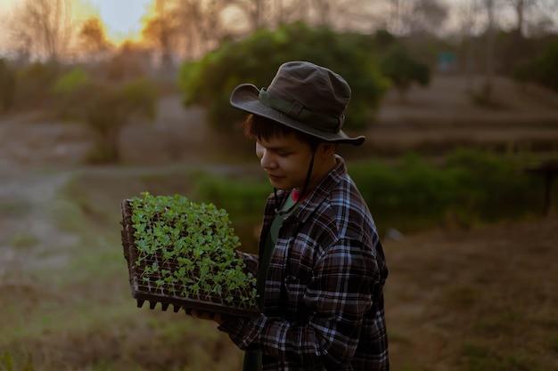 ガーデニングのコンセプトいくつかの緑の植物は、植物がより大きく成長できるように、より大きなスペースに植え替えられました。